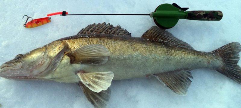 Кивок для рыбалки.