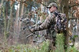 Луки Bear Archery.